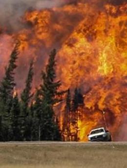 加拿大高温干旱 森林大火蔓延